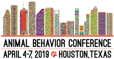 IAABC Conference 2019