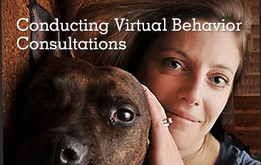 Conducting Virtual Private Behavior Consultations