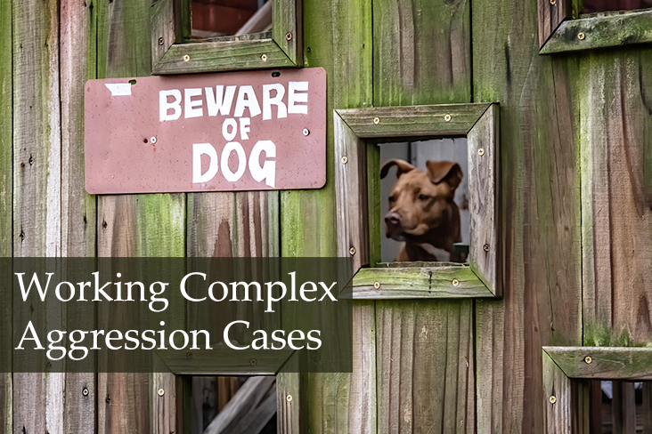 Working Complex Aggression Cases