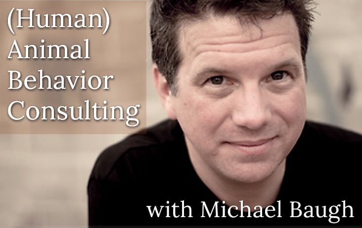(Human) Animal Behavior Consulting with Michael Baugh