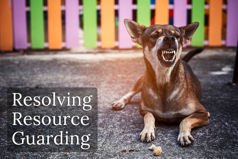 Resolving Resource Guarding